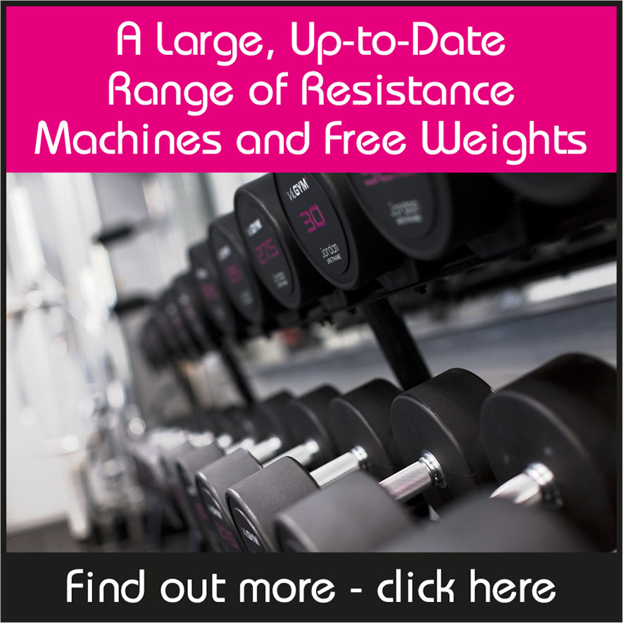 A Large, Up-to-Date Range of Resistance Machines and Free Weights